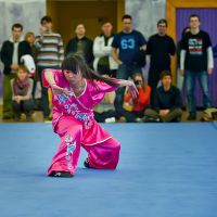 WUSHU by freemax
