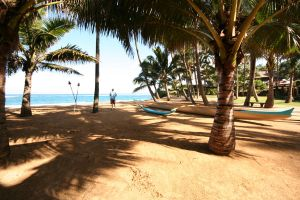Hawaii Stock 23 by hyannah77-stock
