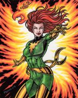Phoenix Color Art by tonyperna