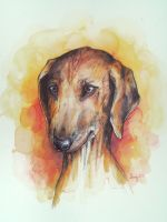 dog-watercolours by daniela2706