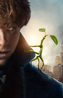 Fantastic Beasts Inter textless Bowtruckle by mintmovi3
