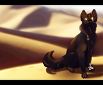are you aware of the desert? by taslishaw