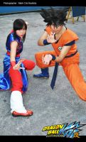 goku chichi in fight cosplay by maiabest9381