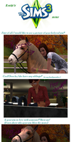 Sims 3 meme by The-Everlasting45