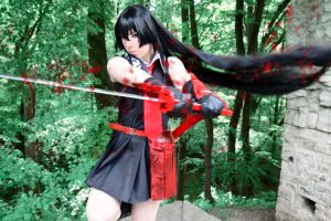 Akame - Akame Ga Kill Cosplay by K-I-M-I