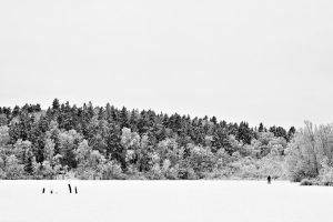 Winterscape II by CalleHoglund