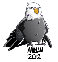 Budgie me ID by eliort