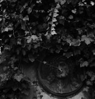 Clad in ivy by LeaHenning