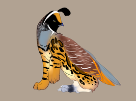 Quail Griffin Adoptable by Whitelupine