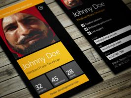 Windows Phone Developer Business Card by iamvinyljunkie