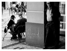 Paying Attention by NunoCanha