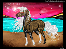 Arabian Knights by TowaTheStallion45