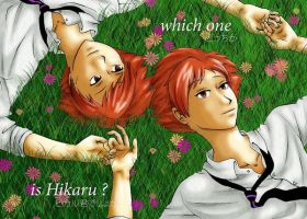 which one is hikaru? by rain-and-sunshine