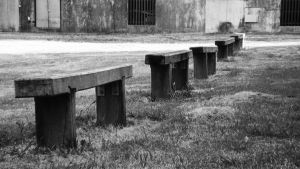 Wooden Seats by delsando