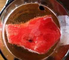 Watermelon Beer by Irkyme