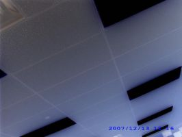 Ceiling Tiles by Screw-The-Lables