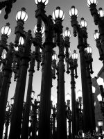 LACMA Lamps by ceciliay
