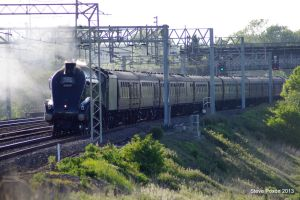 60009 Union Of South Africa by stevepoxon