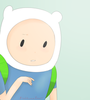 Finn The Human by Mushji