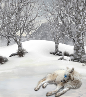 Ice Wolf by WaterSinger