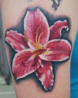 Stargazer Lily Tattoo by joshing88