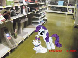 Rarity Shopping by TokkaZutara1164