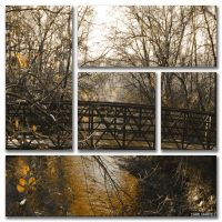 Golden springs by snowboarder371