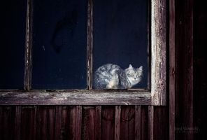 Behind The Window by JoniNiemela