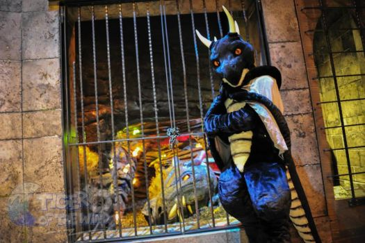 Visiting the Fantasy exhibit at EMP Museum by Nightdragon0
