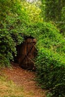 . Hidden Gate . by KimberleePhotography