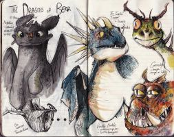 HTTYD Dragon sketches by Dreamsoffools