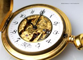 Pocket watch 2 by EMcdonaldPhotography