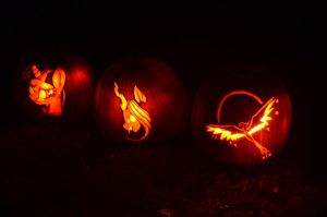 2012 Pumpkins by NomDeCheval