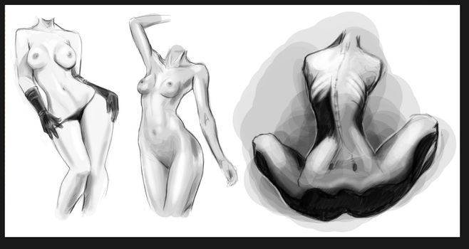 Female anatomy study by Solfei
