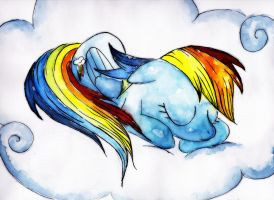 Sleeping Dashie by Rattengoettin
