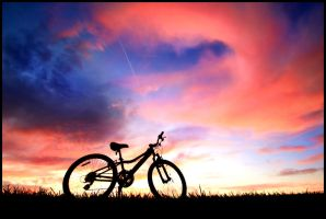 Biking Dream by FramedByNature