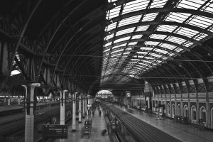 Paddington by sazonian