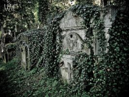 Ivy covered vaults by UnNepher