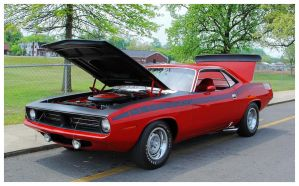 A Sharp Red Cuda by TheMan268