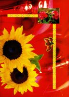 Sunflowers on a red background by NitroFieja