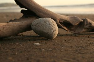 Beach Pebble 5359121 by StockProject1