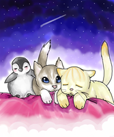 penguin husky cat omfg by XnightkidsX