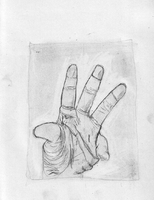 Life Drawing: Hand Study by dvdcpu