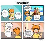 Introduction by stryler