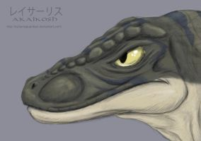 Raptor Head Painting by SylxeriaGuardian