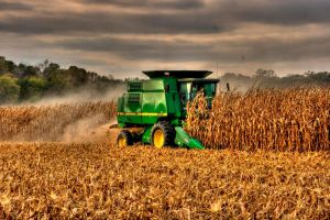 Last Days of Harvest by cthacker
