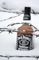 Jack Daniels in snow by sp333d1