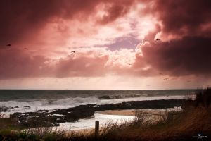 Storm front forms - Bunbury Western Australia 2012 by RaynePhotography