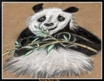 The Giant Panda Chalk Mural by BethMcBeth