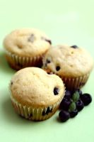 Blueberry Muffins by bittykate
